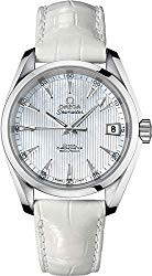 Omega Seamaster Aqua Terra Stainless Steel 38.5mm Diamond Watch 231.13.39.21.55.001